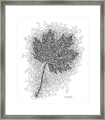 Ink Drawing Of Maple Leaf Framed Print by Karla Beatty