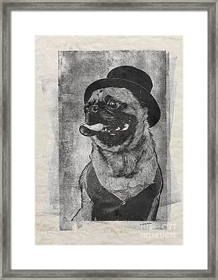 Inky Pug Framed Print by Edward Fielding