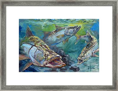 Inlet Action Framed Print by Tom Dauria