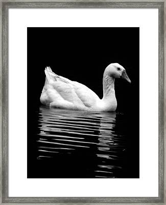 Inner Reflection Framed Print by Jessica Brawley