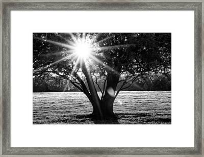Innerlight- Black And White Framed Print by Susan Pantuso