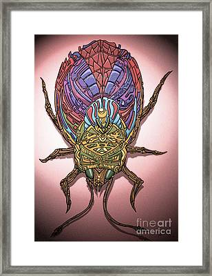 Insect Framed Print by Oliver Betsch