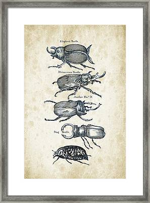 Insects - 1792 - 01 Framed Print by Aged Pixel
