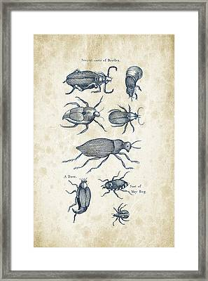 Insects - 1792 - 02 Framed Print by Aged Pixel