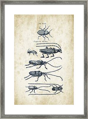 Insects - 1792 - 03 Framed Print by Aged Pixel