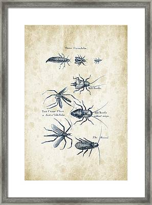 Insects - 1792 - 10 Framed Print by Aged Pixel
