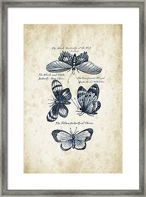 Insects - 1792 - 13 Framed Print by Aged Pixel