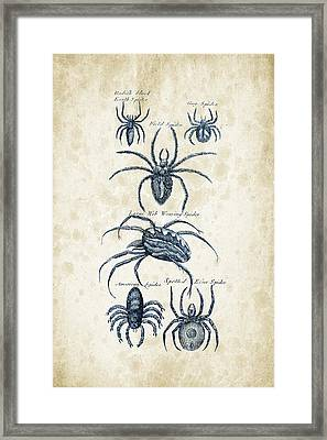 Insects - 1792 - 18 Framed Print by Aged Pixel