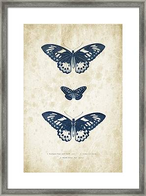Insects - 1832 - 04 Framed Print by Aged Pixel