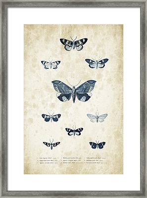 Insects - 1832 - 05 Framed Print by Aged Pixel