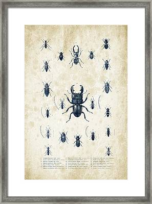 Insects - 1832 - 06 Framed Print by Aged Pixel