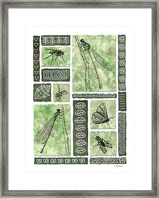 Insects Of Hawaii II Framed Print by Diane Thornton