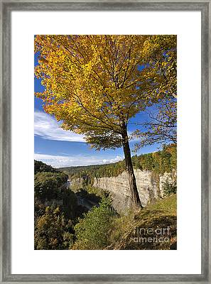 Inspiration Point Framed Print by Louise Heusinkveld