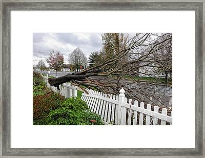 Insurance Claim Framed Print by Olivier Le Queinec