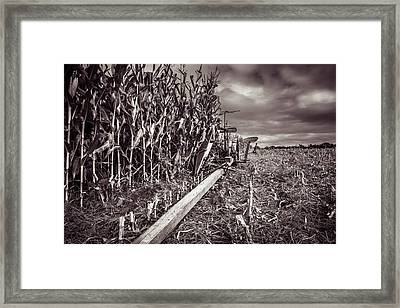 International Harveter Corn Binder Framed Print by Chris Bordeleau