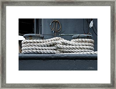 Intertwined Framed Print by Christopher Holmes