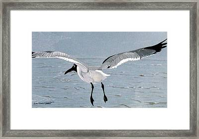 Into The Blue Framed Print by Anita Putman
