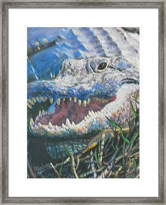 Into The Face Of An Ancient Preditor Framed Print by Pamela Preciado
