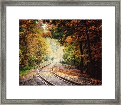Into The Fog Framed Print by Lisa Russo