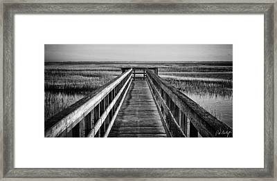 Into The Marsh  Framed Print by Phill Doherty