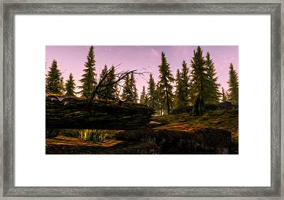 Into The Woods Framed Print by Andrea Mazzocchetti