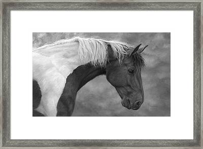 Intrigued - Black And White Framed Print by Lucie Bilodeau
