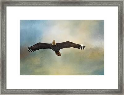 Inviting The Sun Framed Print by Jai Johnson