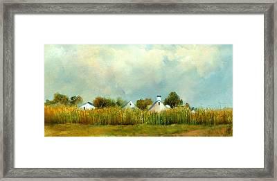 Iowa Cornfields Framed Print by Sally Seago