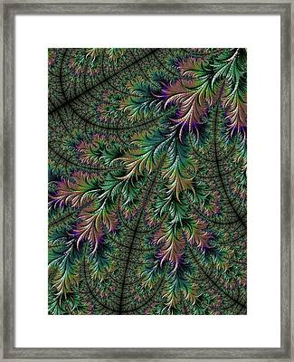 Iridescent Feathers Framed Print by Becky Herrera