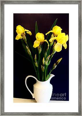 Iris Bouquet Framed Print by Marsha Heiken