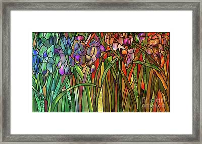 Iris Coloring Book Framed Print by Mindy Sommers