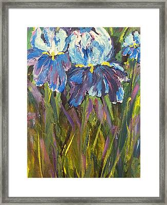 Iris Floral Garden Framed Print by Claire Bull
