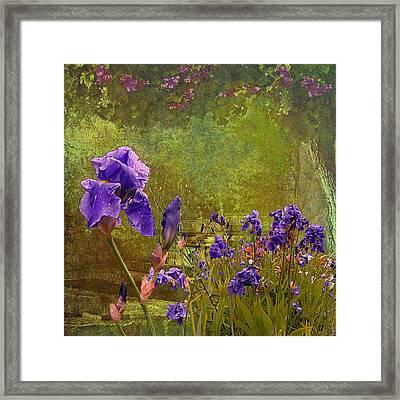 Iris Garden Framed Print by Jeff Burgess