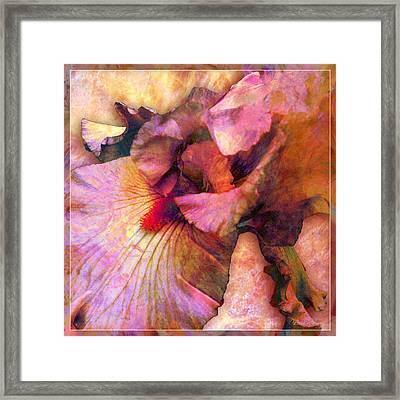 Iris IIi Framed Print by Barbara Berney