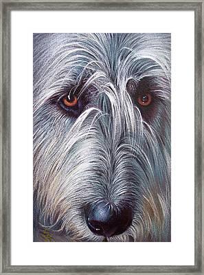 Irish Wolfhound Framed Print by Elena Kolotusha
