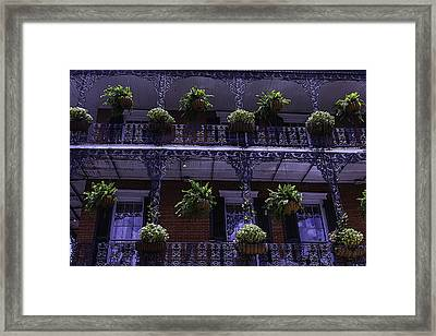 Iron Railings And Plants Framed Print by Garry Gay