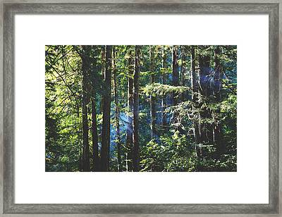 It Shines For You Framed Print by Laurie Search
