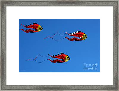 It's A Kite Kind Of Day Framed Print by Clayton Bruster
