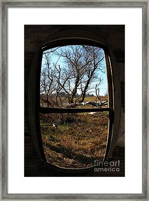 It's All A Matter Of Perspective Framed Print by Amanda Barcon