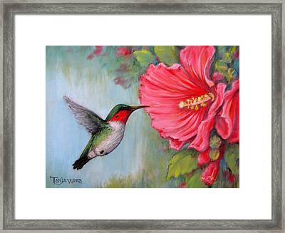 It's Hummer Time Framed Print by Tanja Ware