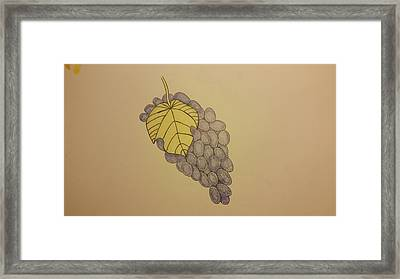 It's Just Grapes... Framed Print by Andrew Rice