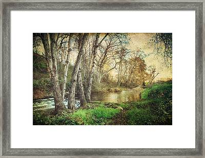It's Passed Me By Framed Print by Laurie Search