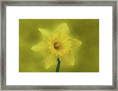 It's Spring Framed Print by Sandy Keeton
