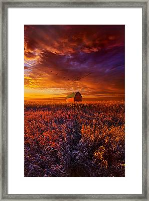 It's The Fire And The Wings That Fly Us Home Framed Print by Phil Koch