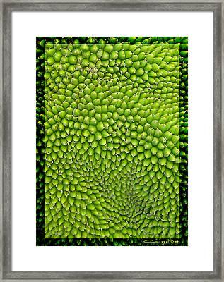 Jackfruit Detail Framed Print by Caroline Czelatko