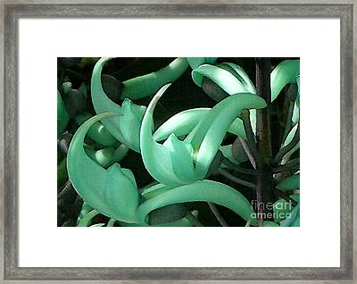 Jade Vine Framed Print by James Temple