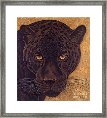 Jag Framed Print by Lawrence Supino