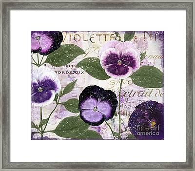 January Purple Pansies Framed Print by Mindy Sommers
