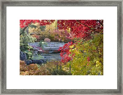 Japanese Gardens Framed Print by Idaho Scenic Images Linda Lantzy