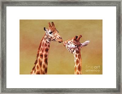 Je T'aime Giraffes Framed Print by Terri Waters